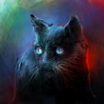 meow7